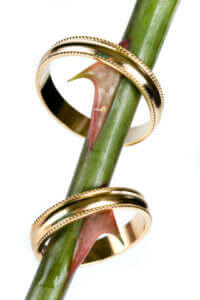 Two wedding rings balance on the thorns of a rose stem.